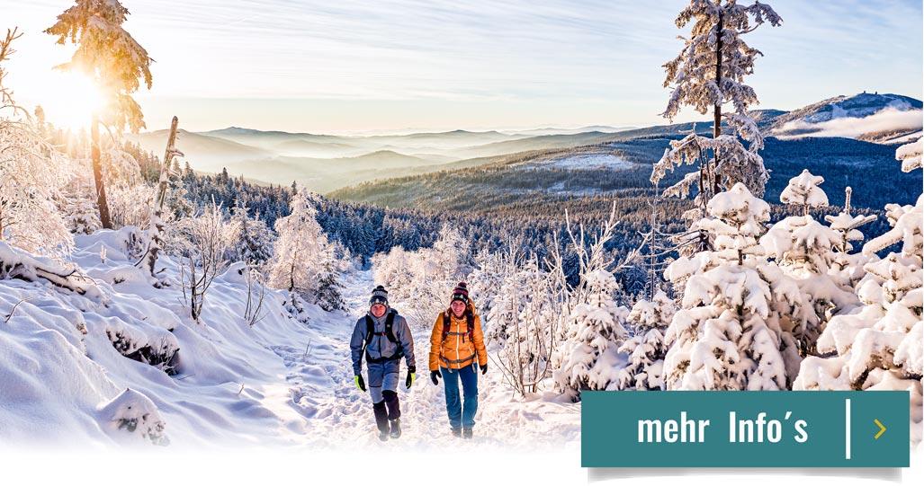 3 Tage Angebot Glashotel in Zwiesel Bayern Bodenmais Arber Winter