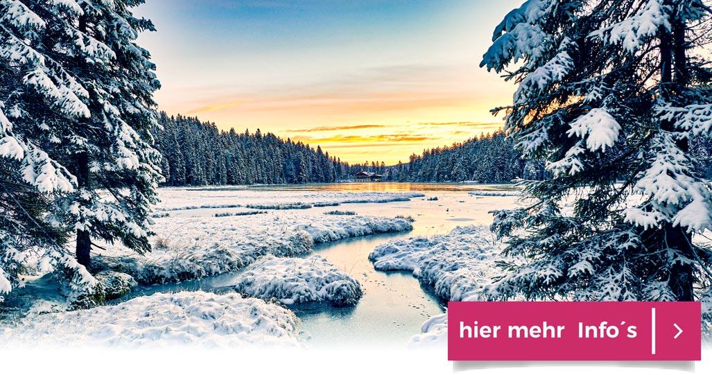 Sonnenstunden Winterlandschaft Bayern Bodenmais Zwiesel genießen